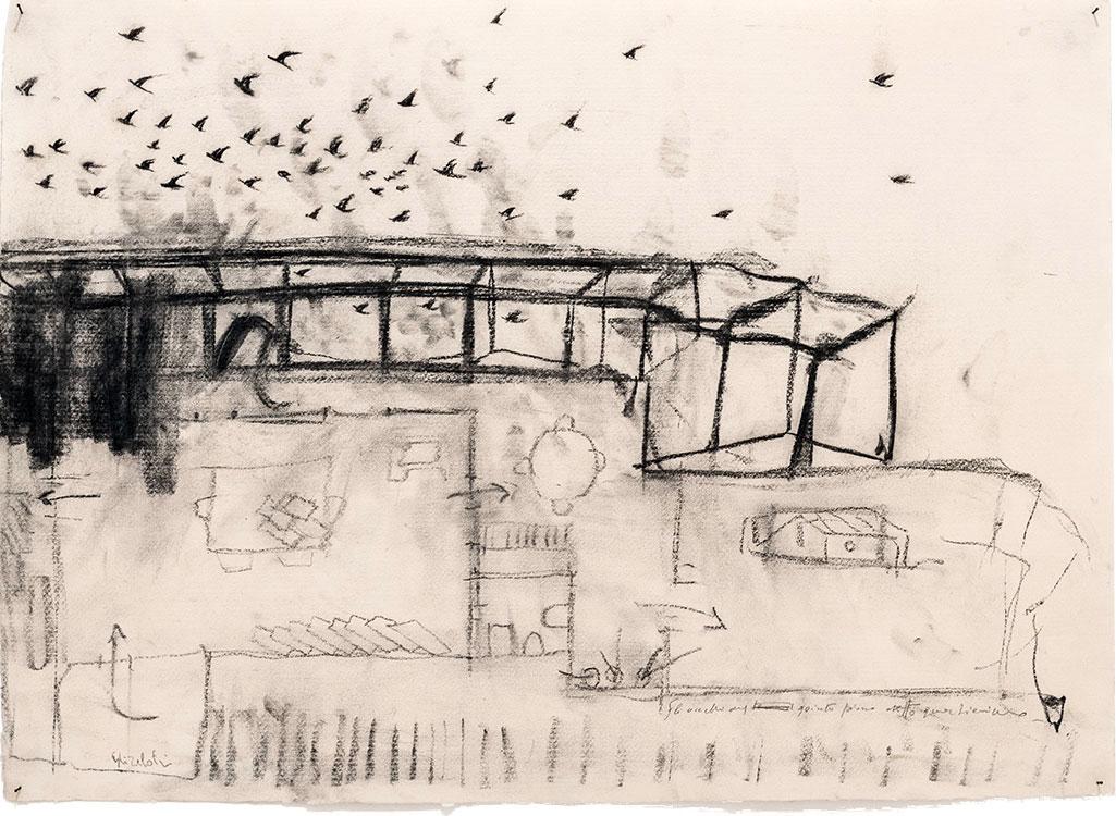 Gli uccelli del quinto piano detto il Quartierino, 2015, tecnica mista su carta, cm 48 x 67