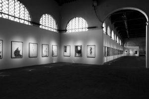 Allestimento della mostra alle Pagliere di Palazzo Pitti - Firenze - Foto di Bruno Bruchi.
